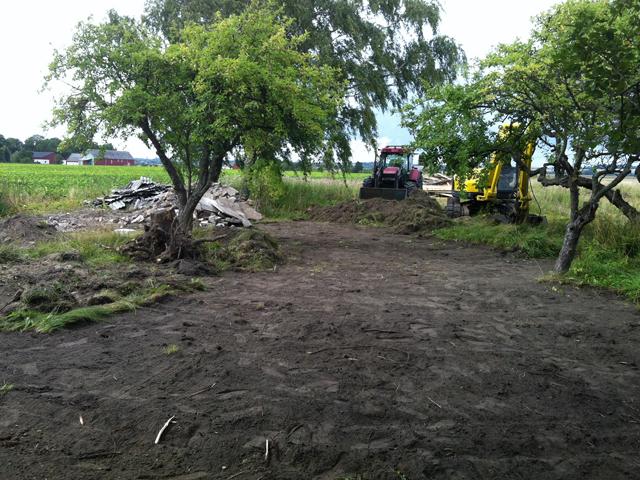 trädgård4